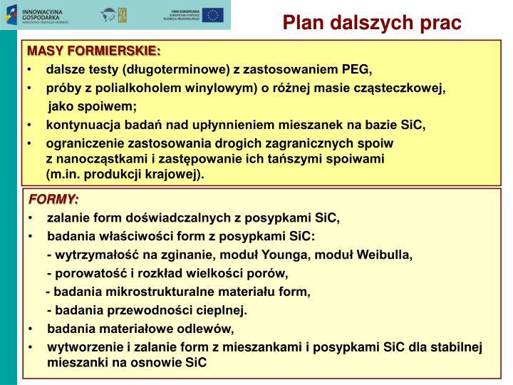 Plan dalszych prac