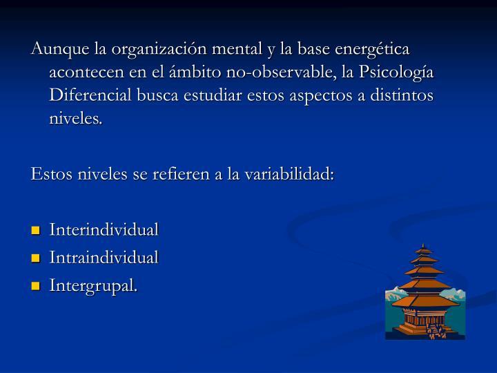Aunque la organización mental y la base energética acontecen en el ámbito no-observable, la Psicología Diferencial busca estudiar estos aspectos a distintos niveles.