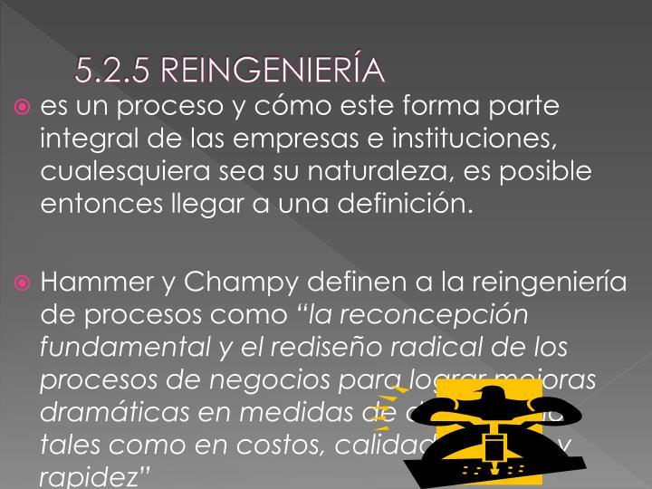 5.2.5 REINGENIERÍA