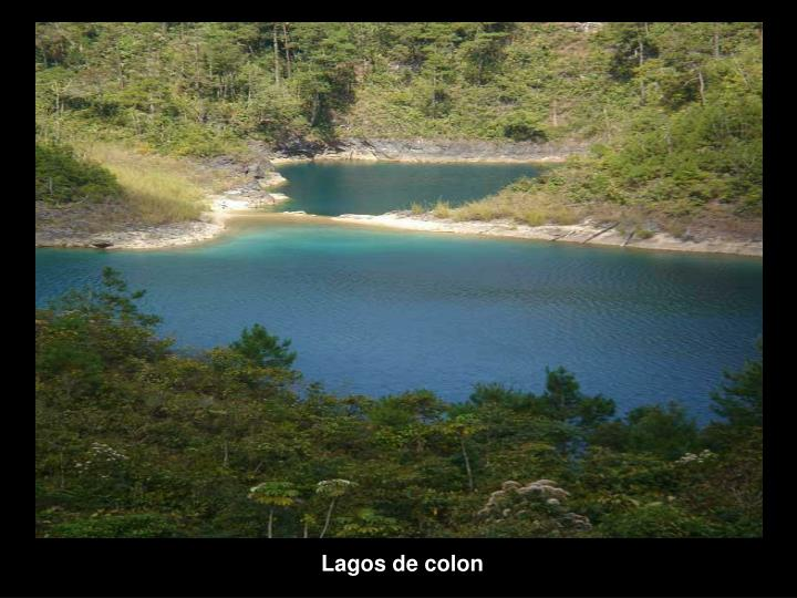 Lagos de colon