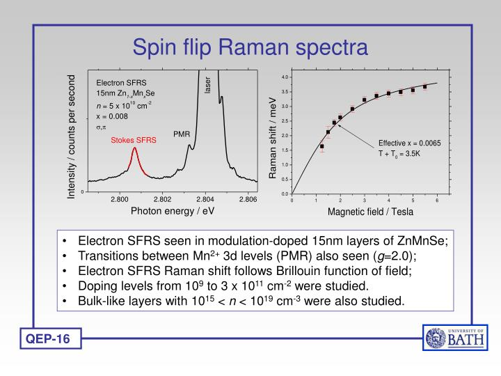 Spin flip Raman spectra