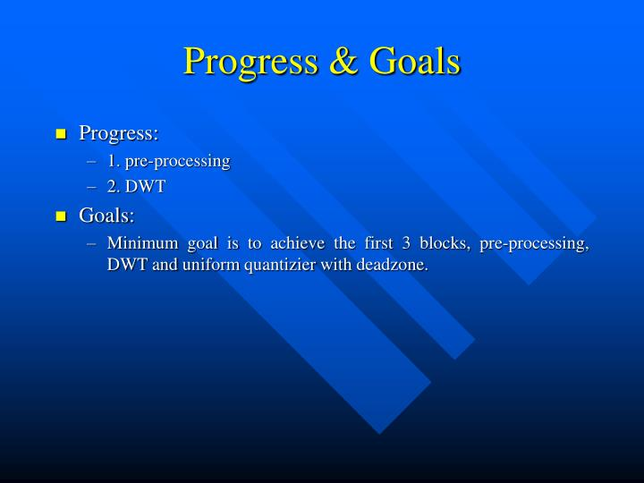 Progress & Goals