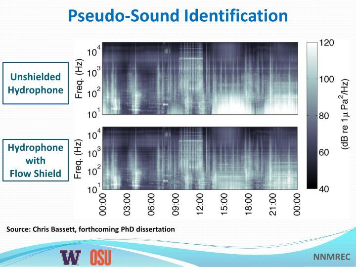 Pseudo-Sound Identification