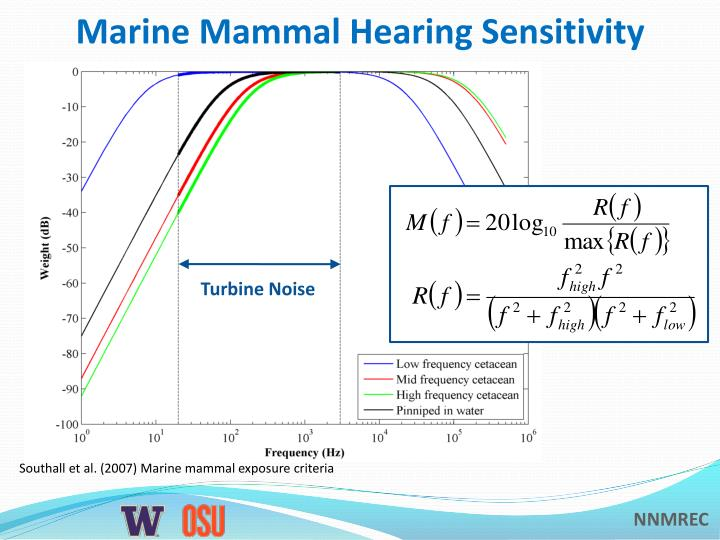 Marine Mammal Hearing Sensitivity