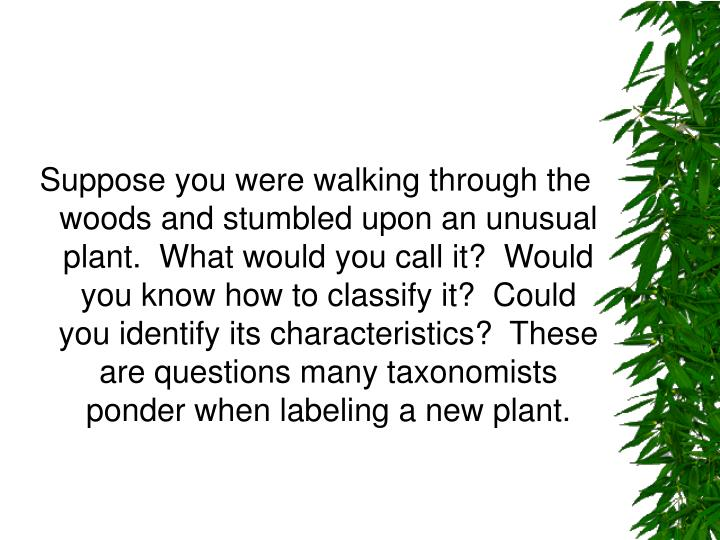 Suppose you were walking through the woods and stumbled upon an unusual plant.  What would you call ...