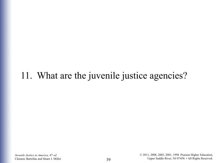 11.	What are the juvenile justice agencies?