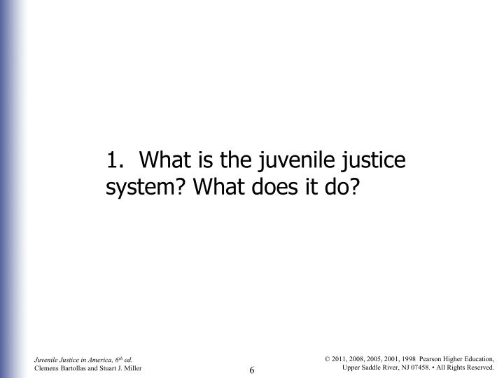 1.  What is the juvenile justice system? What does it do?