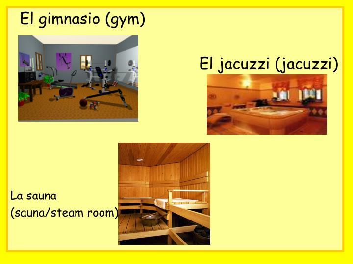 El gimnasio (gym)