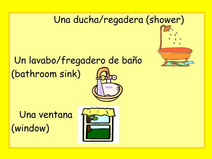 Una ducha/regadera (shower)
