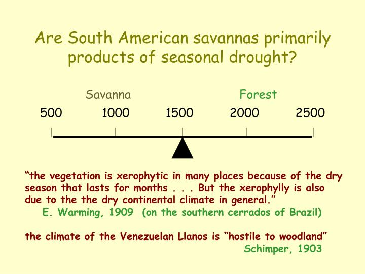 Are South American savannas primarily products of seasonal drought?