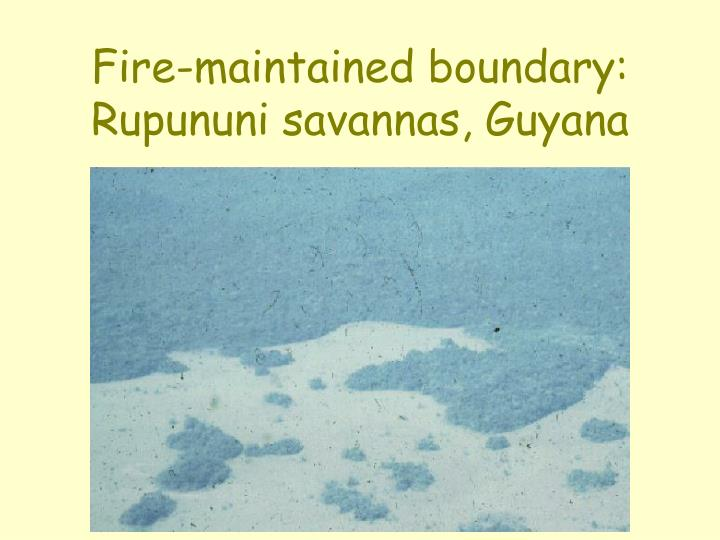 Fire-maintained boundary: