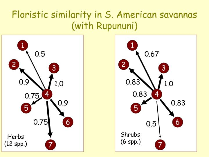 Floristic similarity in S. American savannas
