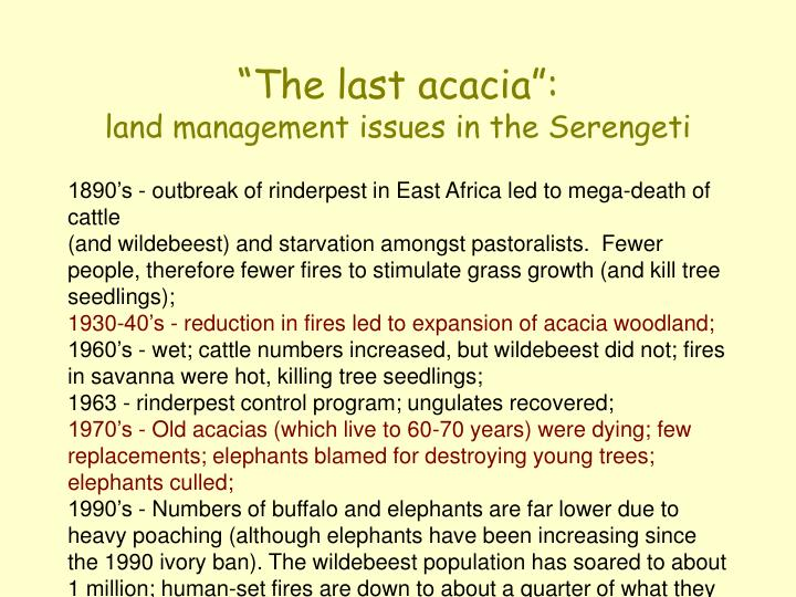 """The last acacia"":"
