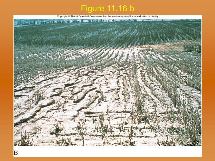 Figure 11.16 b