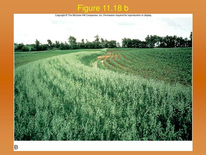 Figure 11.18 b