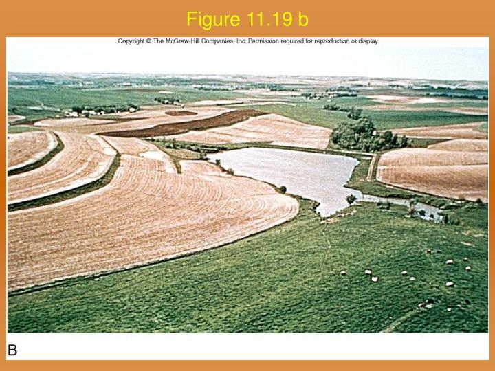 Figure 11.19 b