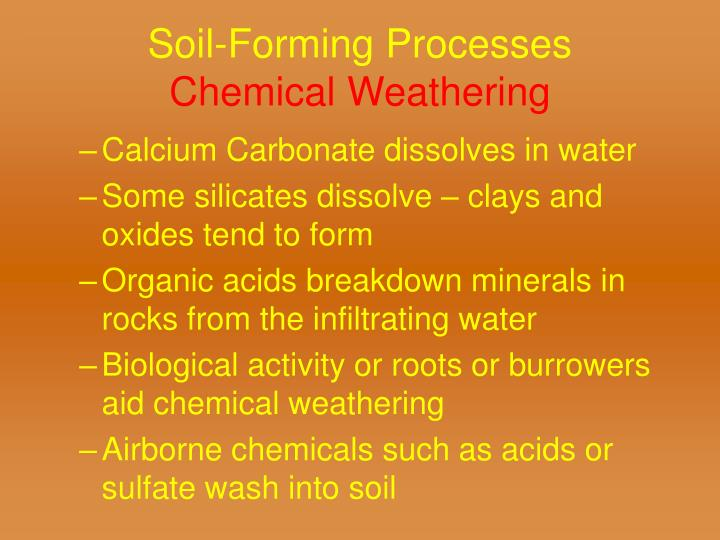 Soil-Forming Processes