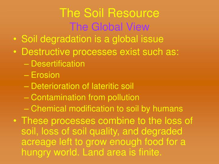 The Soil Resource