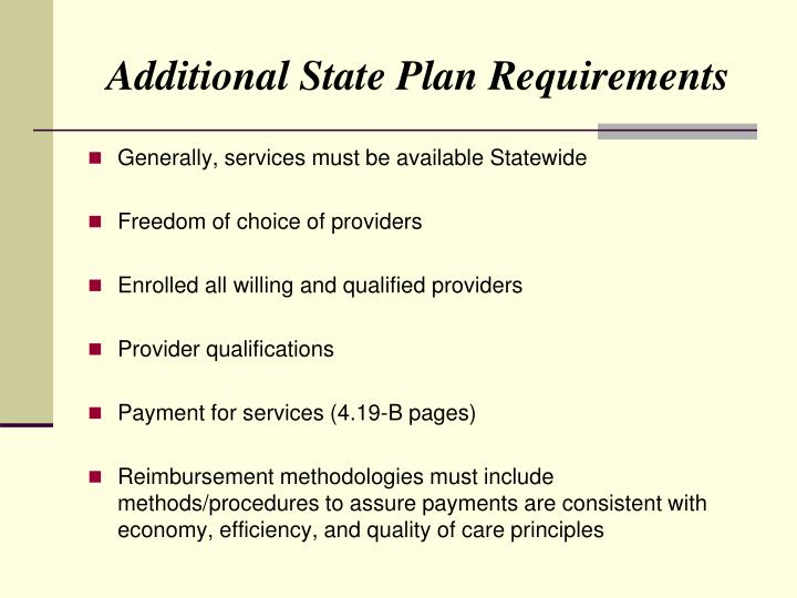 Additional State Plan Requirements