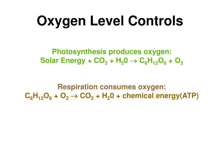 Oxygen Level Controls