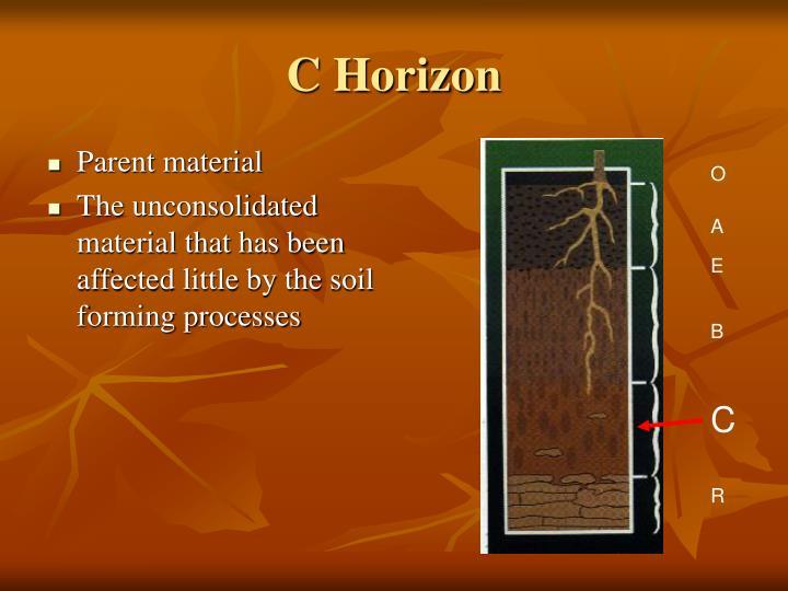 C Horizon