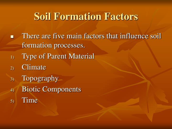 Soil Formation Factors