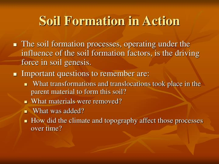 Soil Formation in Action