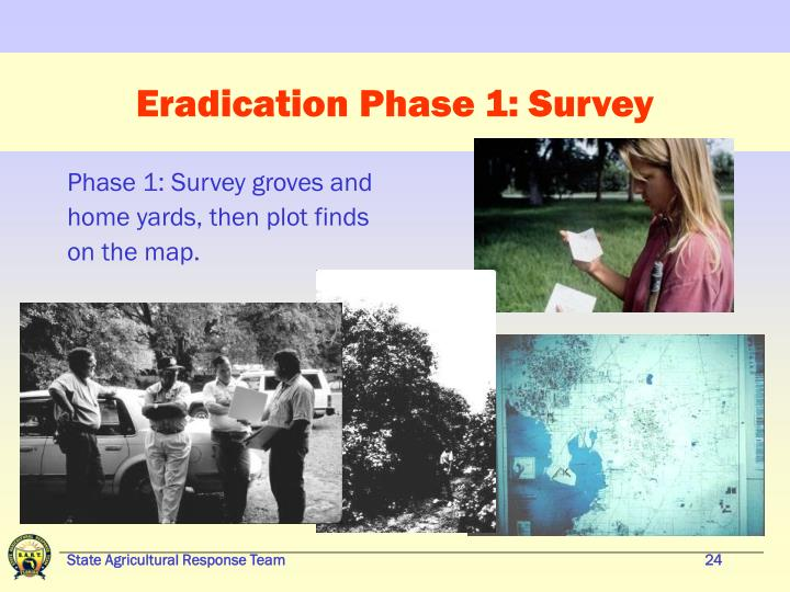 Eradication Phase 1: Survey