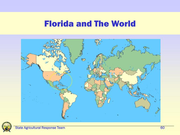 Florida and The World