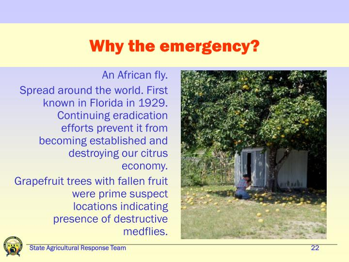 Why the emergency?