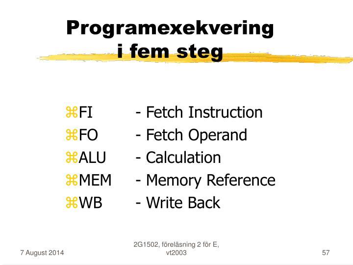 Programexekvering
