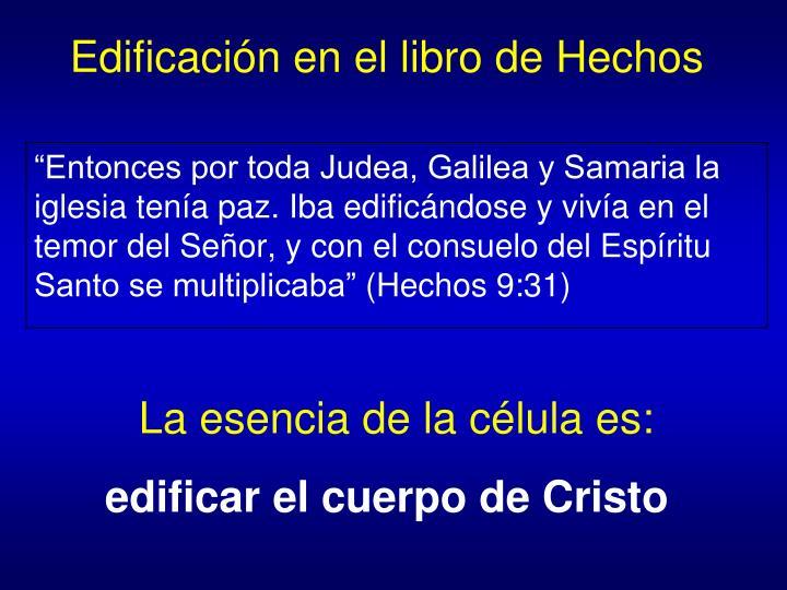 Edificación en el libro de Hechos