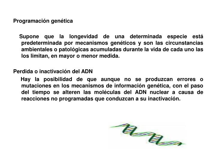 Programación genética