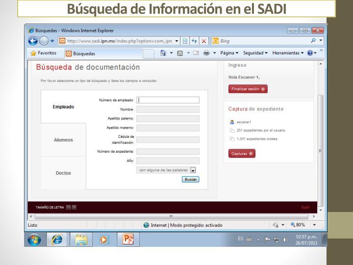 Búsqueda de Información en el SADI