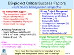 es project critical success factors from senior management perspective