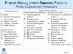 project management success factors project management perspective