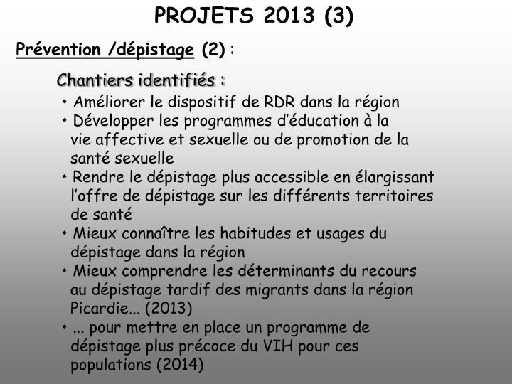 PROJETS 2013 (3)
