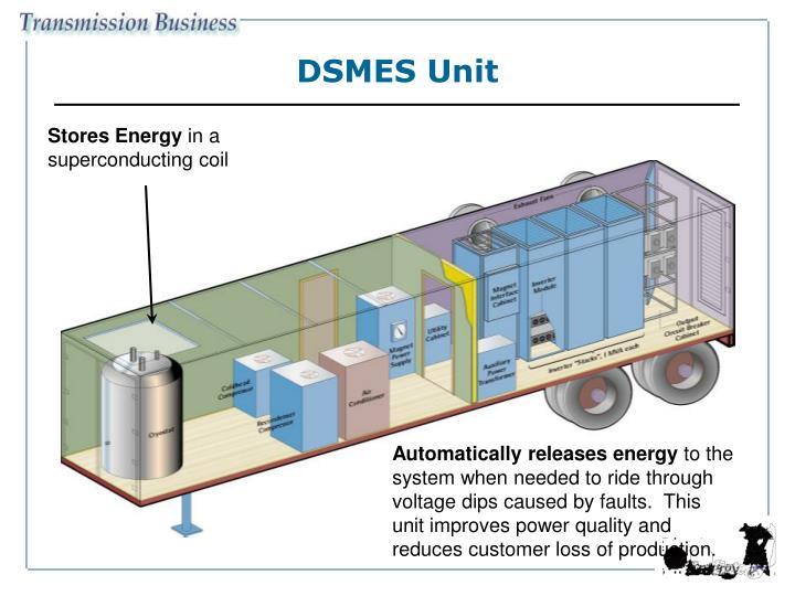DSMES Unit