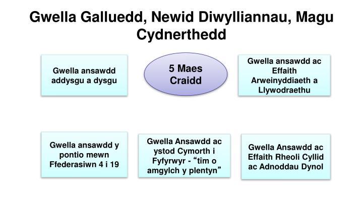 Gwella Galluedd, Newid Diwylliannau, Magu Cydnerthedd