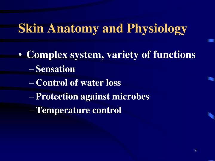 Skin anatomy and physiology1