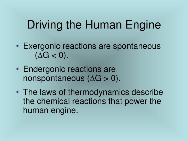 Driving the Human Engine