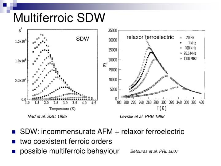 Multiferroic SDW