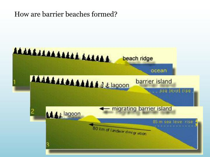 How are barrier beaches formed?