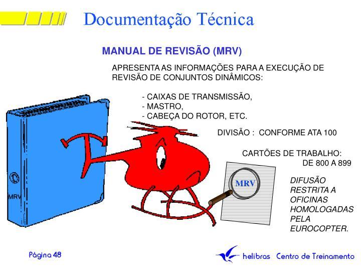 MANUAL DE REVISÃO (MRV)