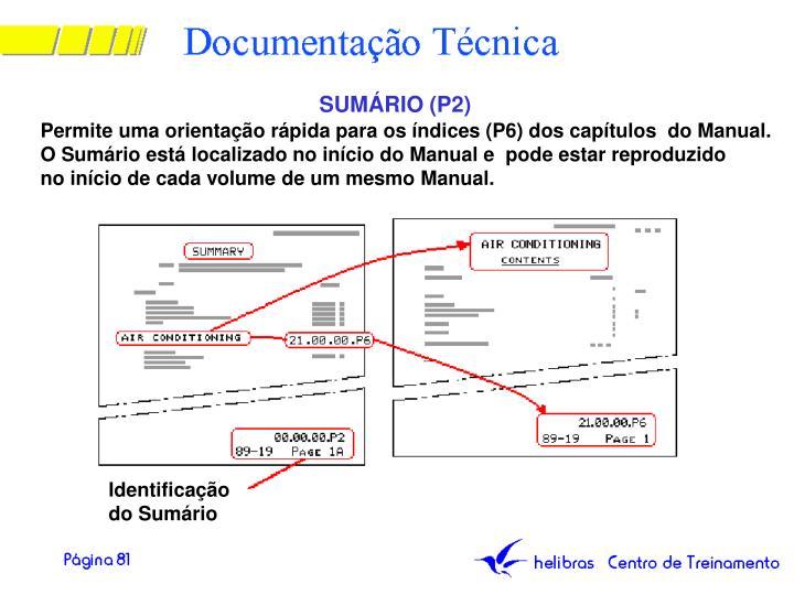 SUMÁRIO (P2)