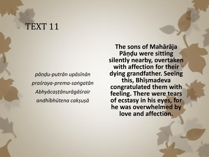 TEXT 11