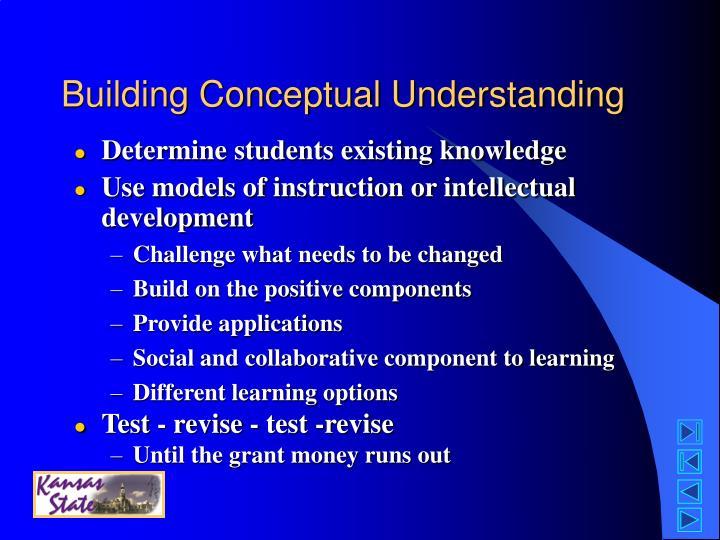 Building Conceptual Understanding