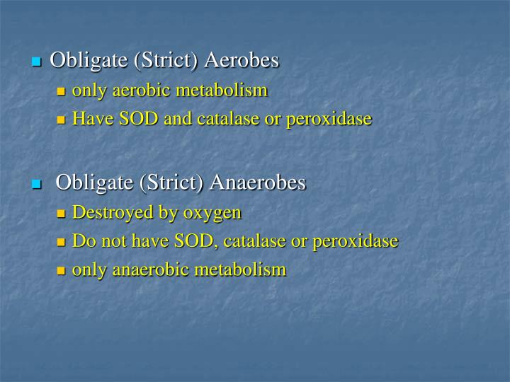 Obligate (Strict) Aerobes