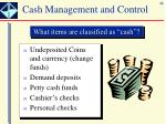 cash management and control