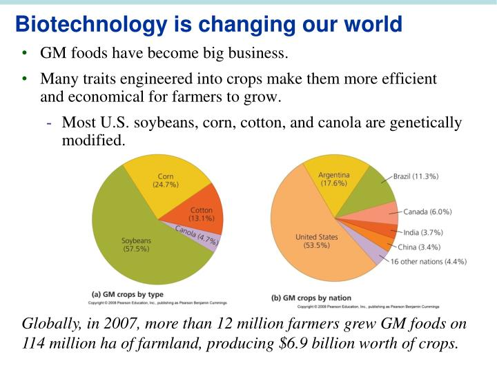 GM foods have become big business.